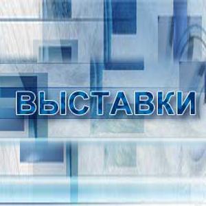 Выставки Давыдовки